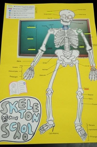 Skeletal System Dem Bones project