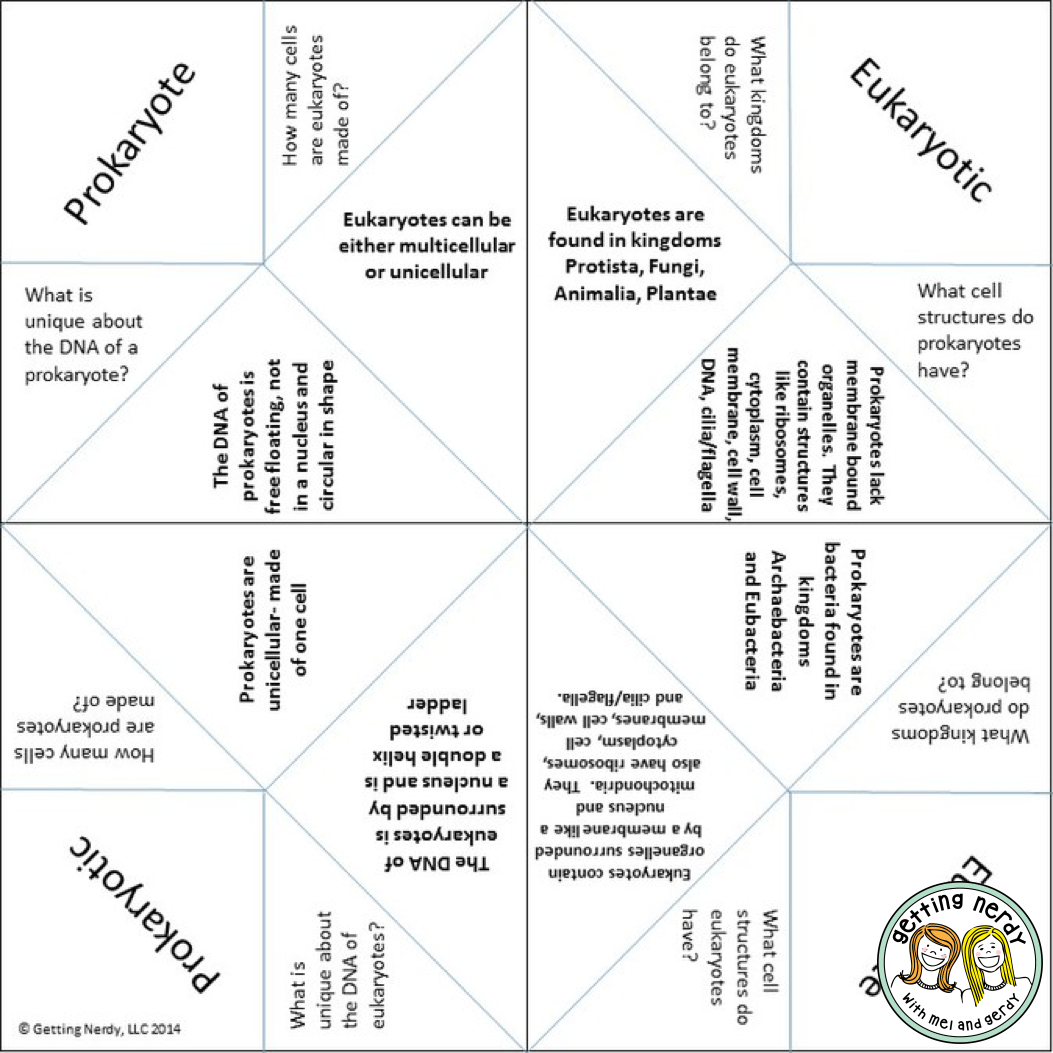 Lesson Plan Cootie Catchers As Study Tools
