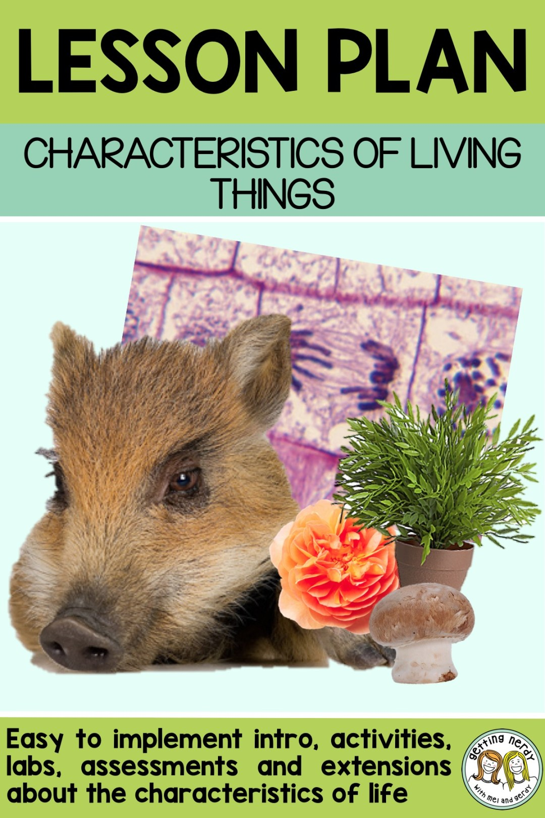 Here are some great ideas to get your kids thinking about the needs and characteristics of living things #gettingnerdyscience #lifescience #characteristicsoflife