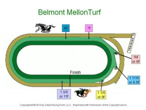 Horse Racing Track Diagram