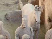 I really liked the horses
