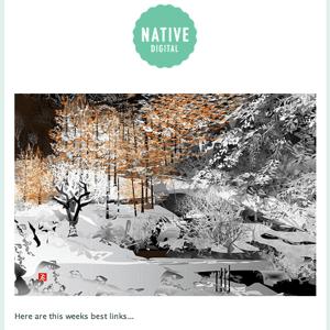Native Digital