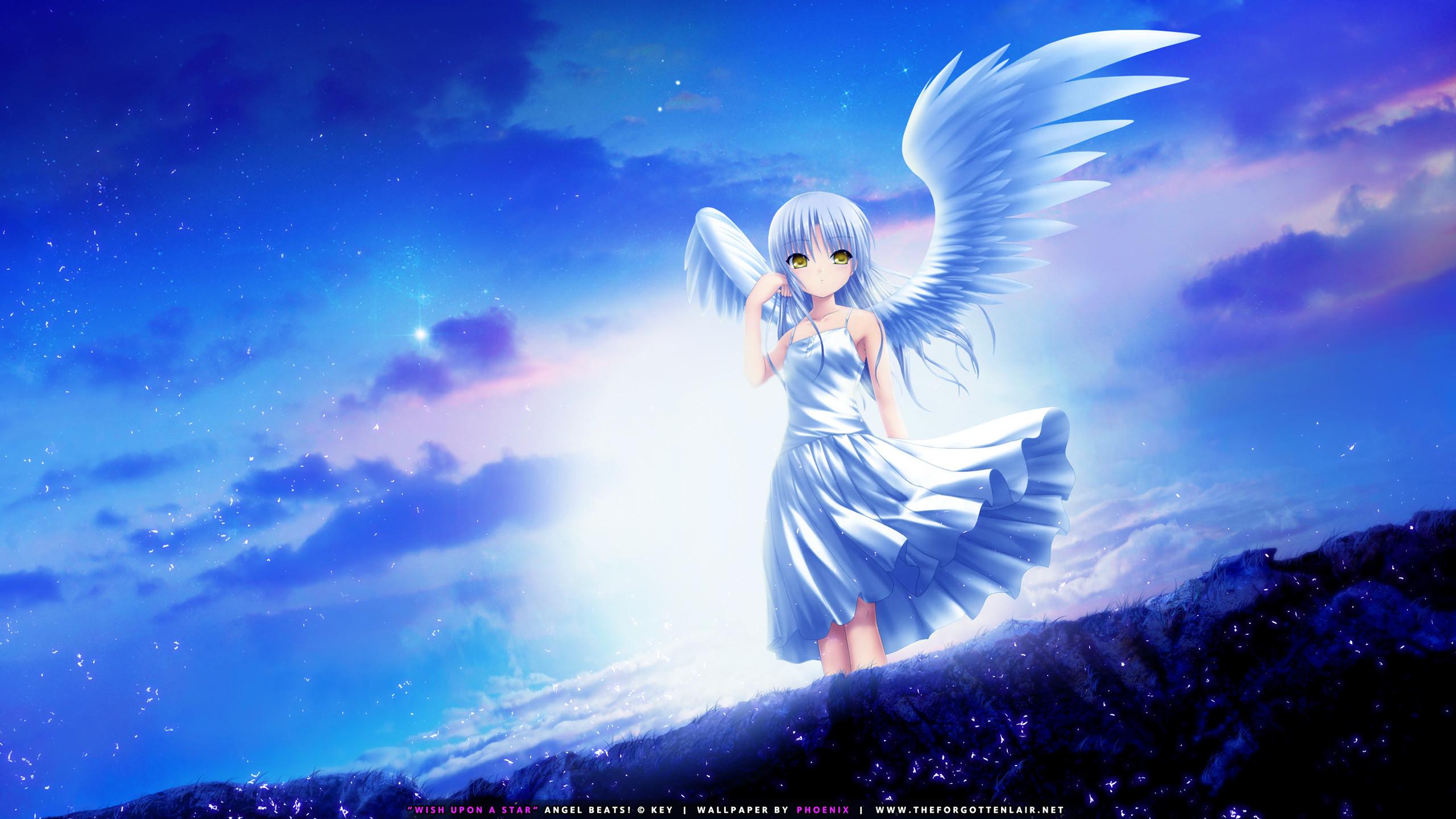 Cool Girl Saiyan Wallpaper Angel Desktop Wallpaper 58 Images