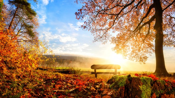 Fall Autumn Scenery Wallpaper Desktop