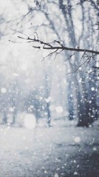 winter christmas backgrounds snow pretty wallpapers background scenes iphone walpaper wonderland landscape getwallpapers