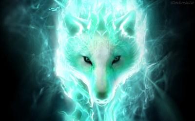 wolf dark widescreen category