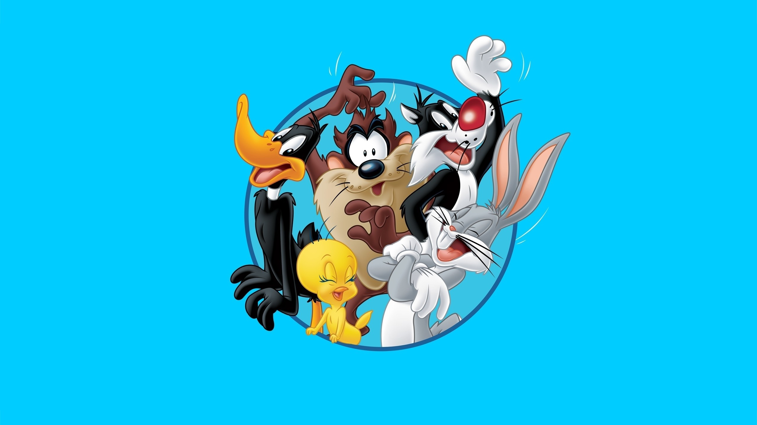 Daffy Duck Wallpaper 54 Images