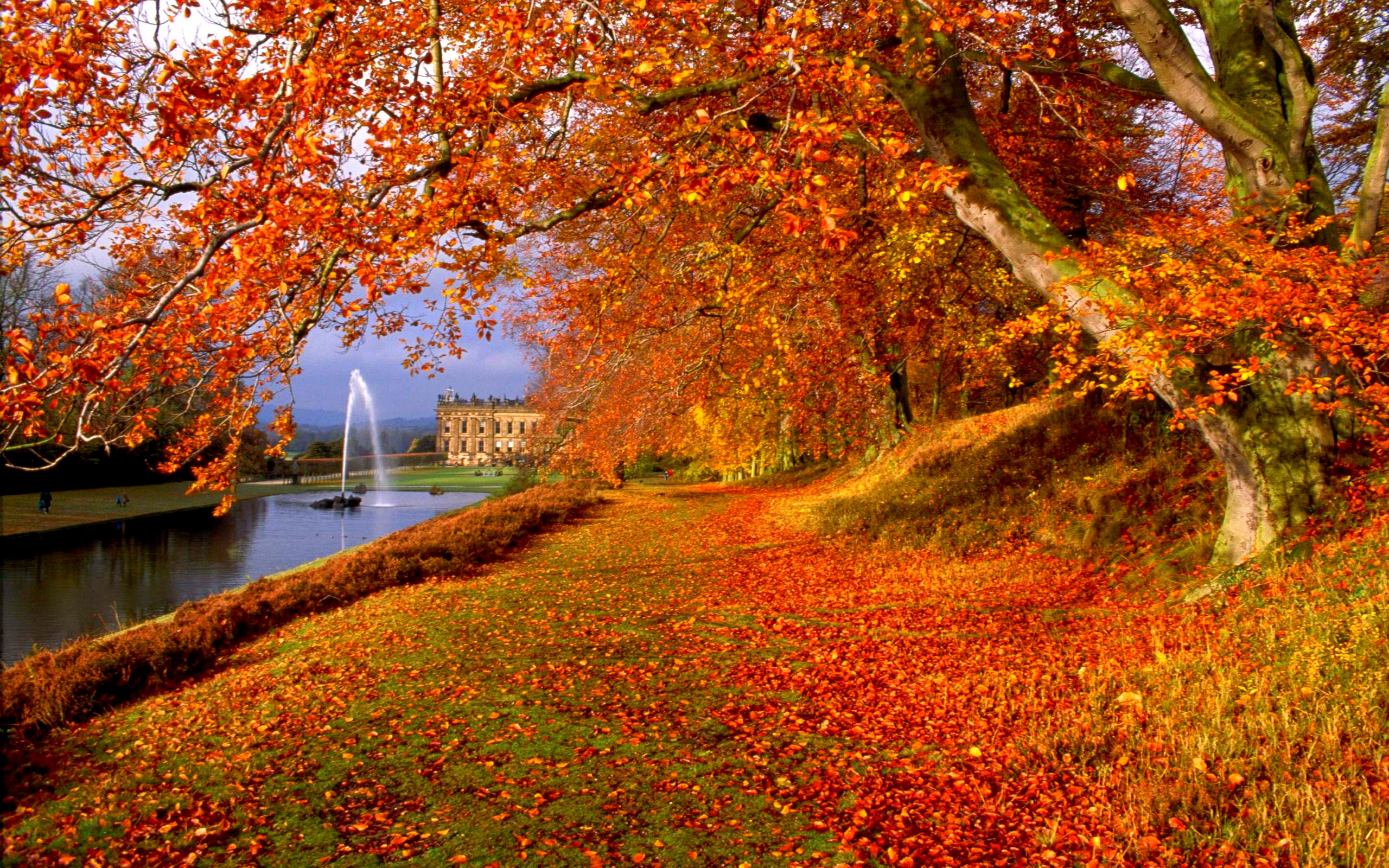 Falling Leaves Live Wallpaper For Android Autumn Screen Wallpaper 64 Images