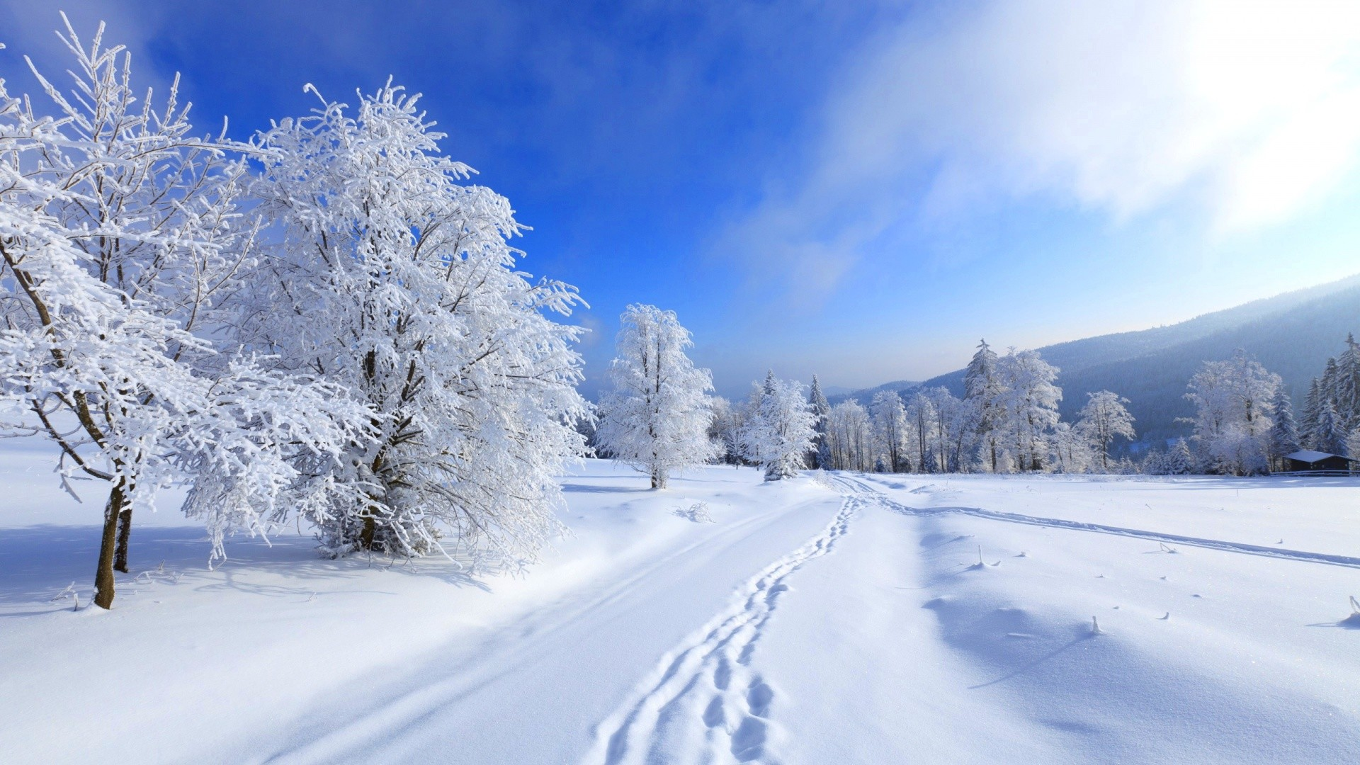 Free Animated 3d Wallpaper Winter Snow Desktop Wallpaper 33 Images