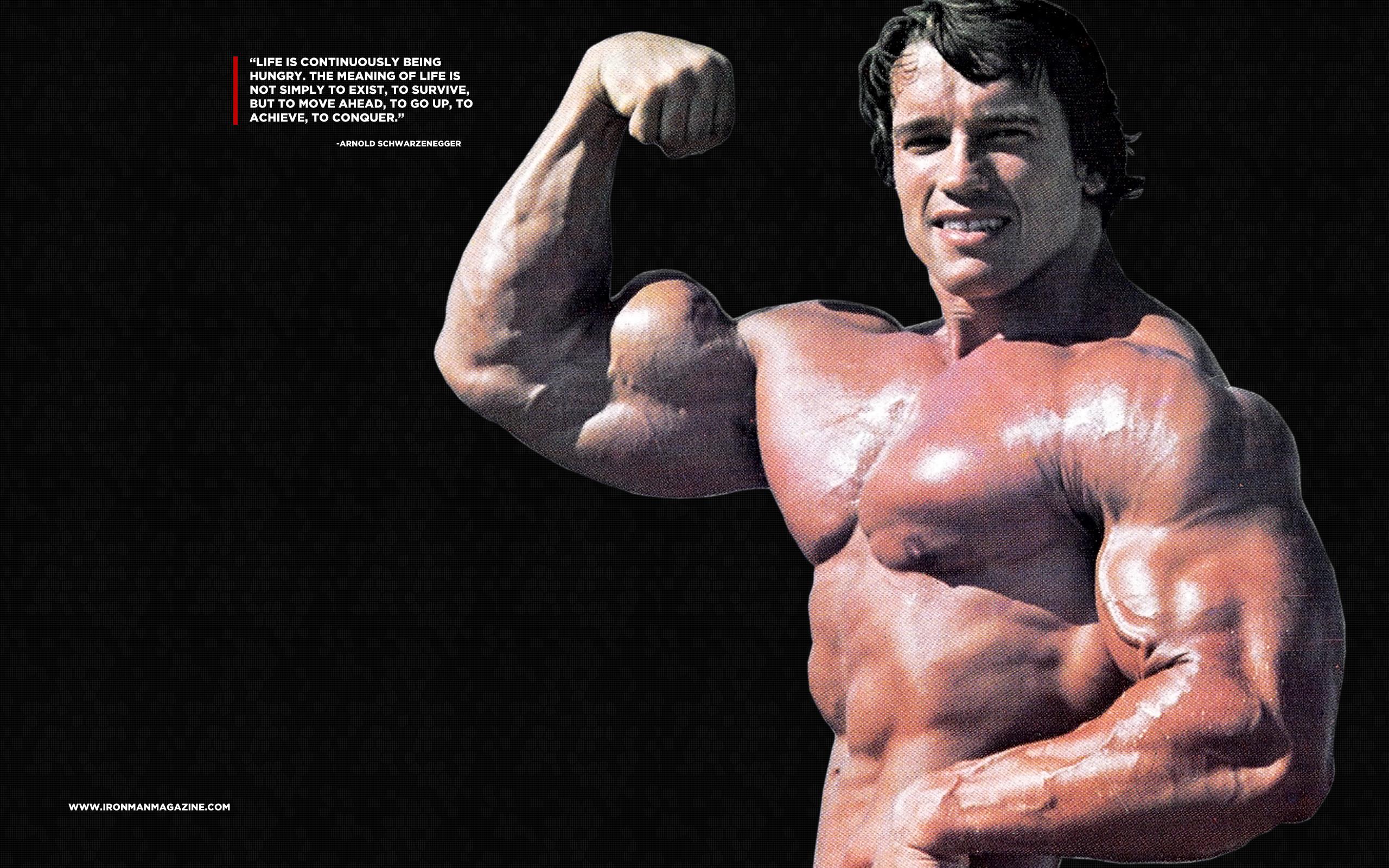 Iphone X Wallpaper Bodybuilding Arnold Schwarzenegger Wallpaper 75 Images