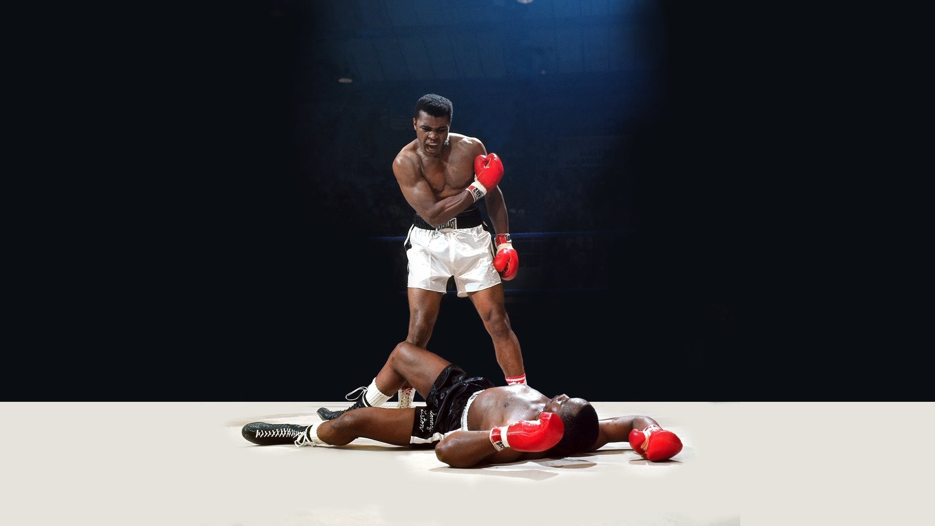 boxing wallpapers hd 68
