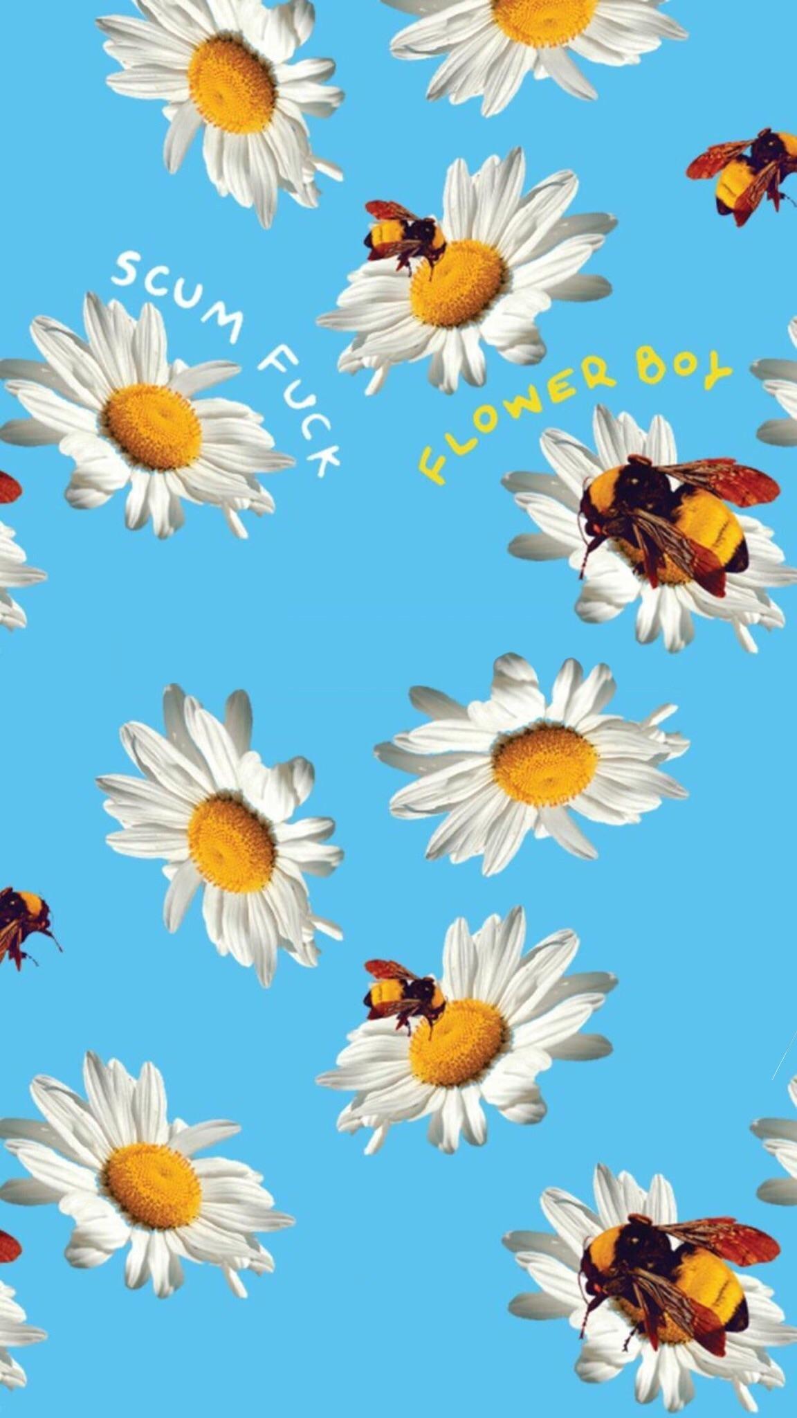 Imgur Iphone Wallpaper Golf Wang Wallpaper 79 Images