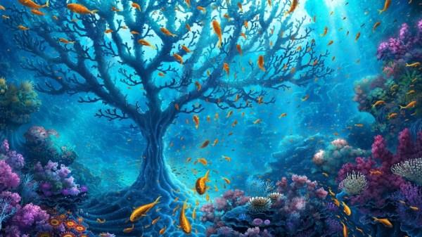 Underwater Hd Wallpapers 1920x1080 79