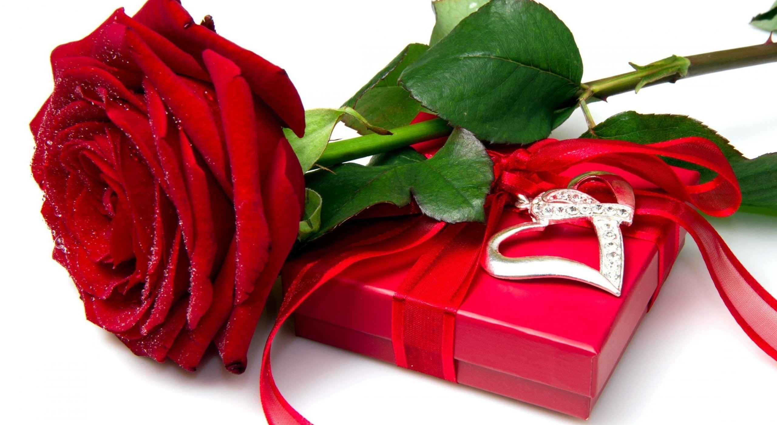 Red Rose Heart Wallpaper 53 Images