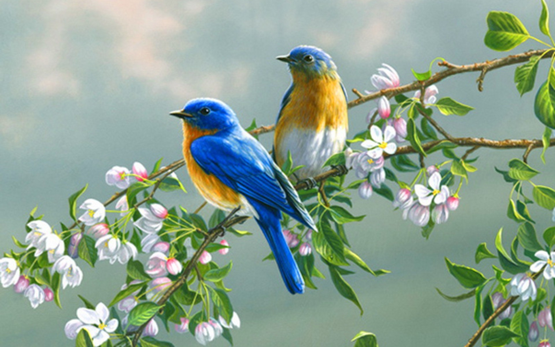 wallpaper birds and flowers