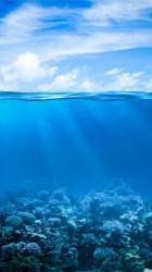 ocean iphone sea wallpapers underwater hd 4k coral under mobile desktop reef nature screensavers animal popular wallpaperget wallpapersite tags