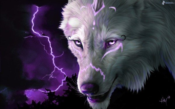 Trippy Wolf Wallpapers 66