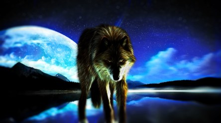 Moon Red Wolf Wallpaper 5