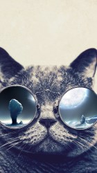 cat cool wallpapers iphone glasses background cats wallpaperaccess backgrounds galaxy grumpy getwallpapers