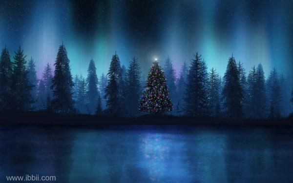 Beautiful Christmas Night Scenes