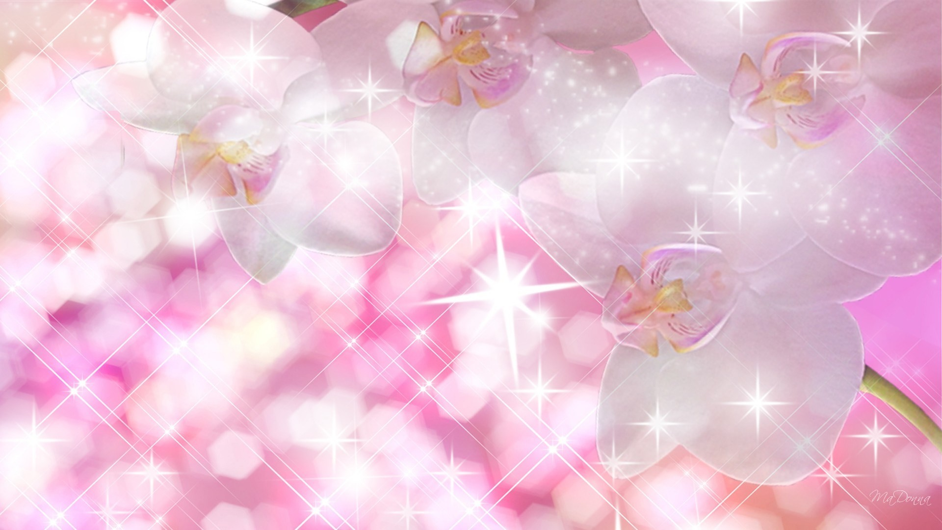 Sparkly Background Wallpaper 68 Images