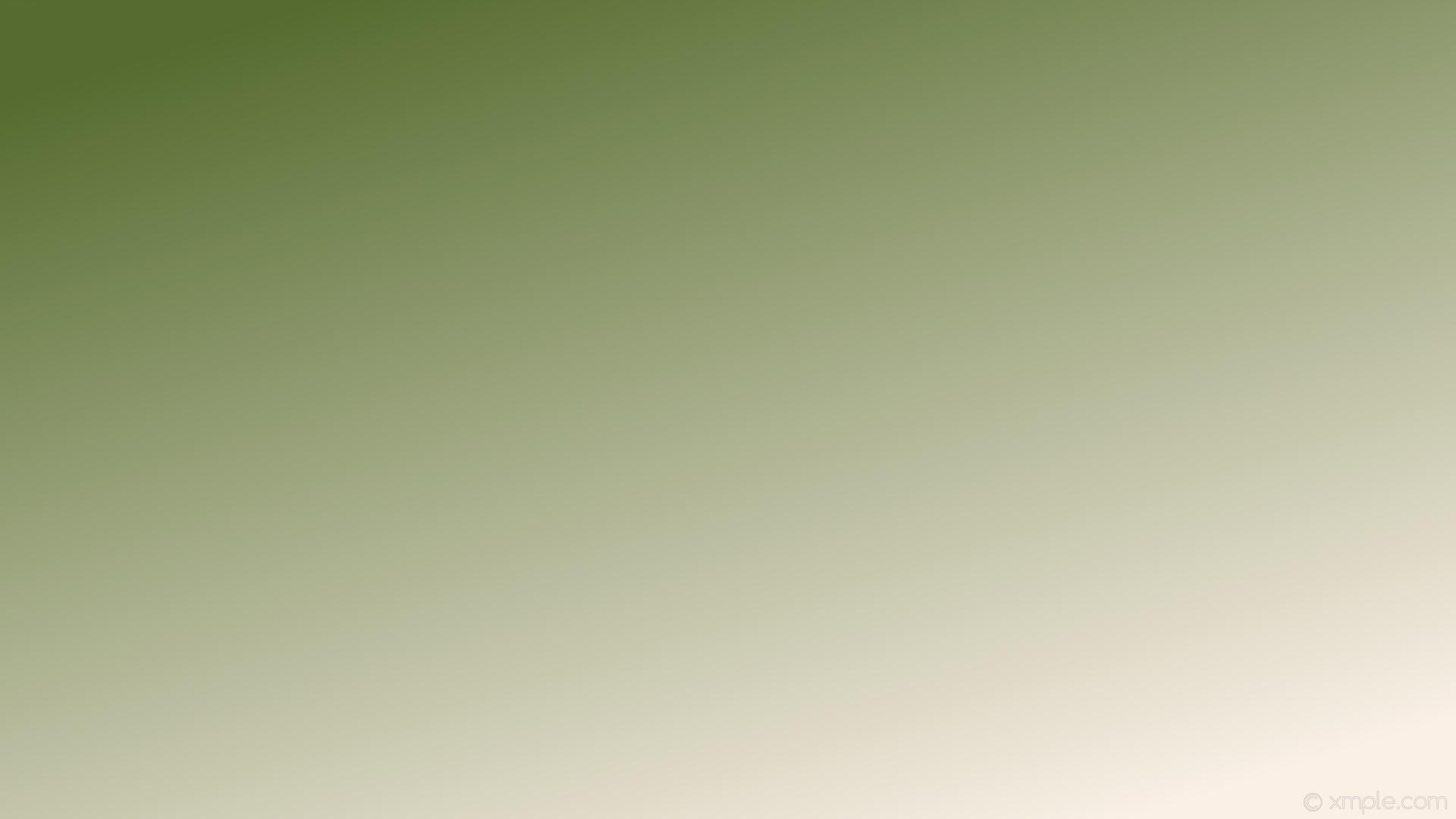 Olive Green Wallpaper 72 images