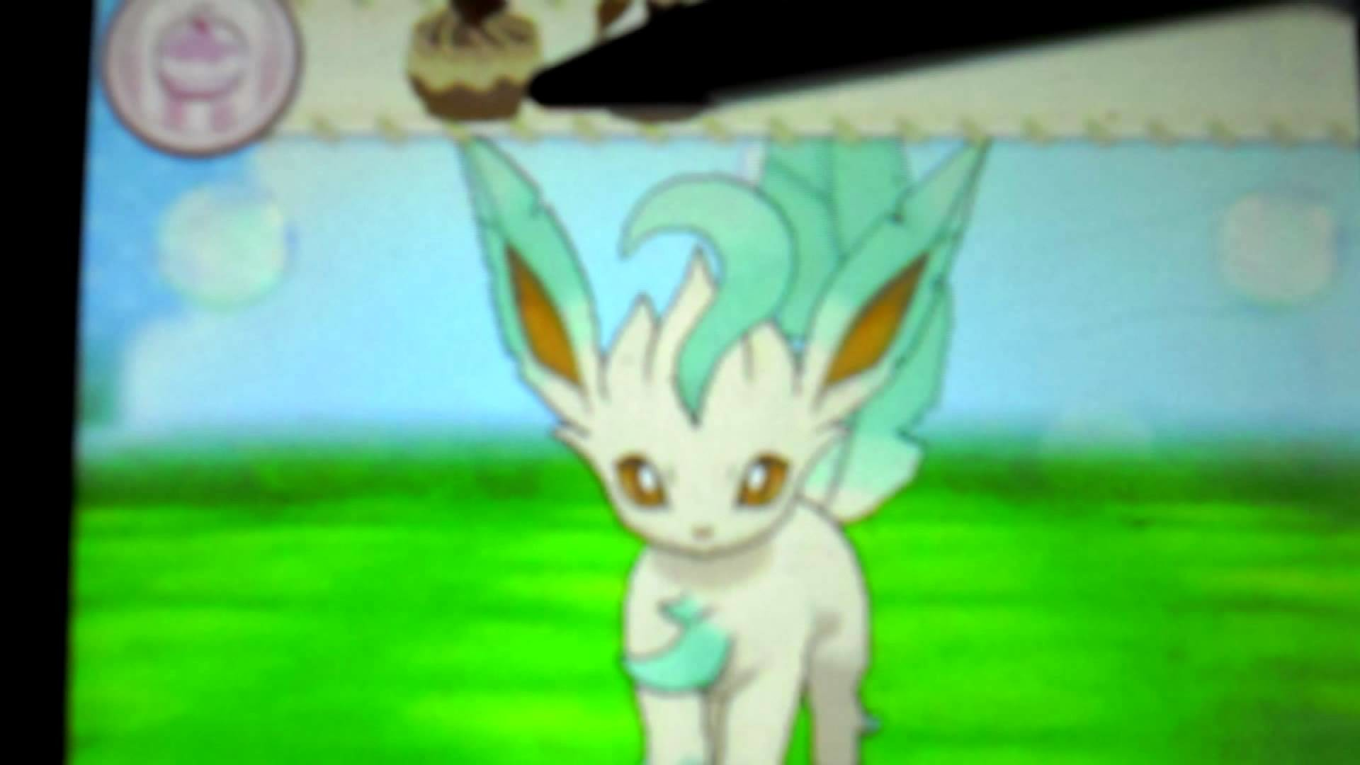 Cute Glaceon Wallpaper Leafeon Wallpaper 64 Images
