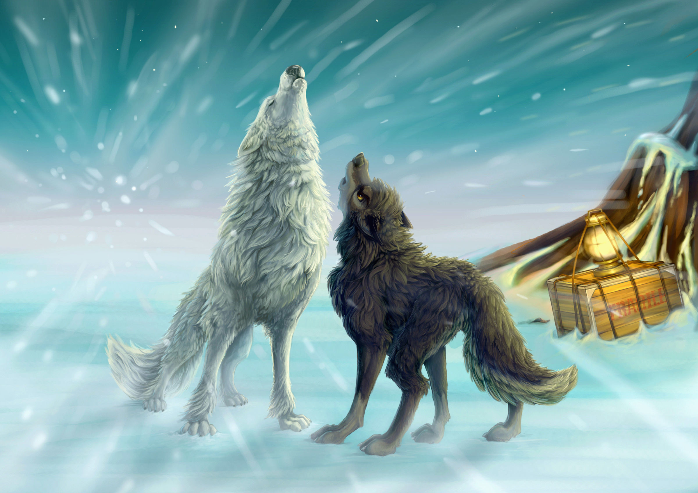 animated wolf wallpaper 64