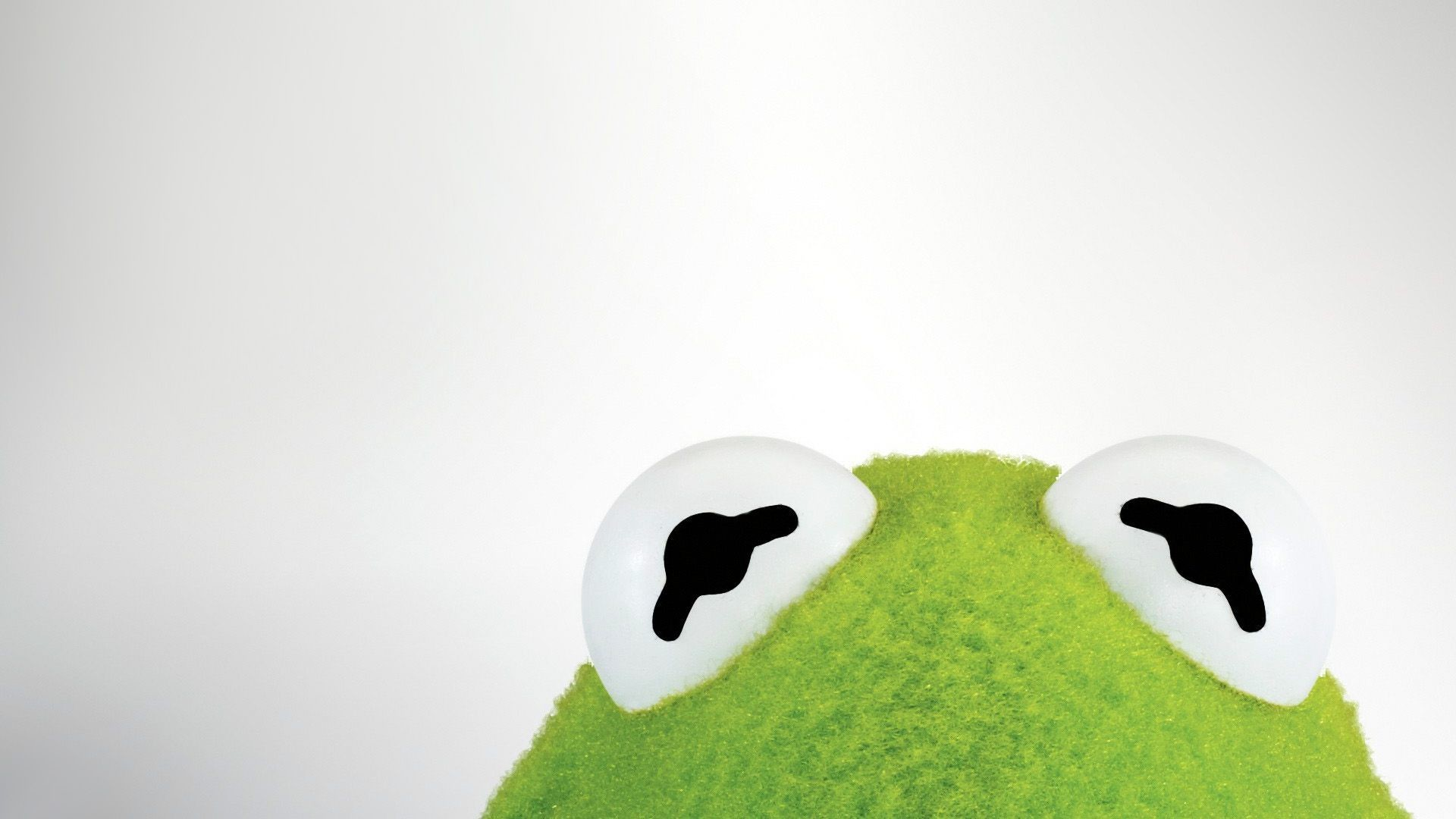 Funny Kermit Backgrounds