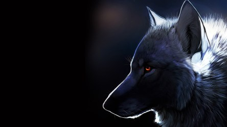 wolf wallpapers 1080 animated 1920a adorable