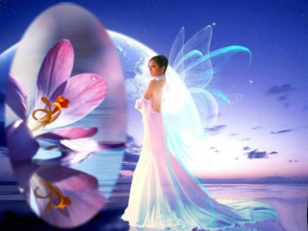 Fairies Desktop Wallpaper