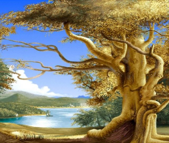 X Explore Wallpaper Hd For Desktop Tree Wallpaper And More