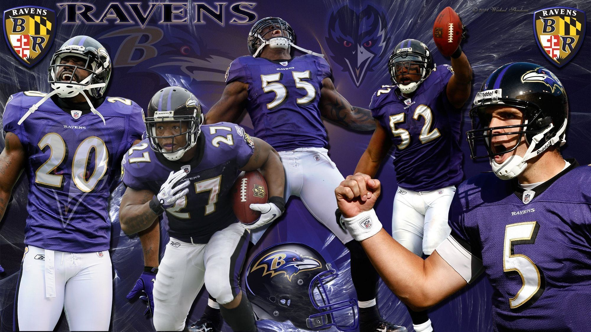 Lion Live Wallpaper Iphone X Ravens And Orioles Wallpaper 64 Images