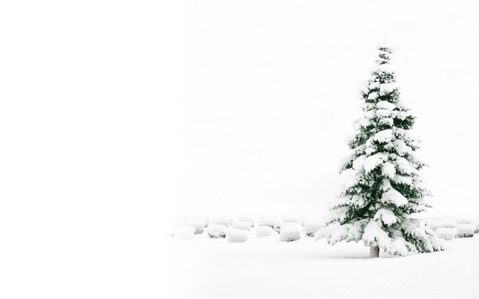 Snowy Christmas Backgrounds 48 Images