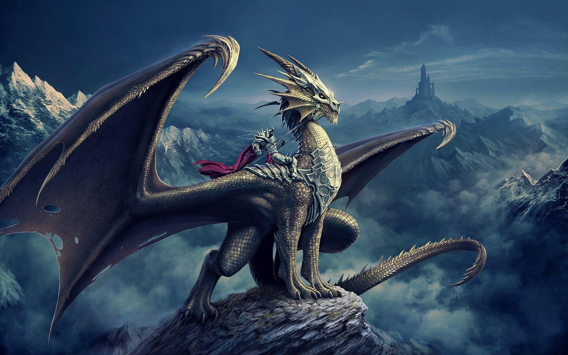 cool dragons wallpaper 62