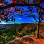 Fall Hd Widescreen Wallpaper 58 Images