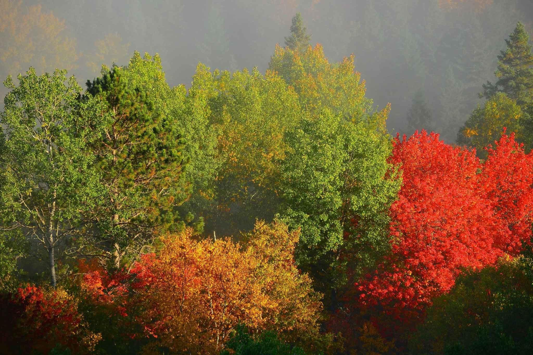 2560x1080 Fall Mountain Wallpaper Autumn Screen Wallpaper 64 Images