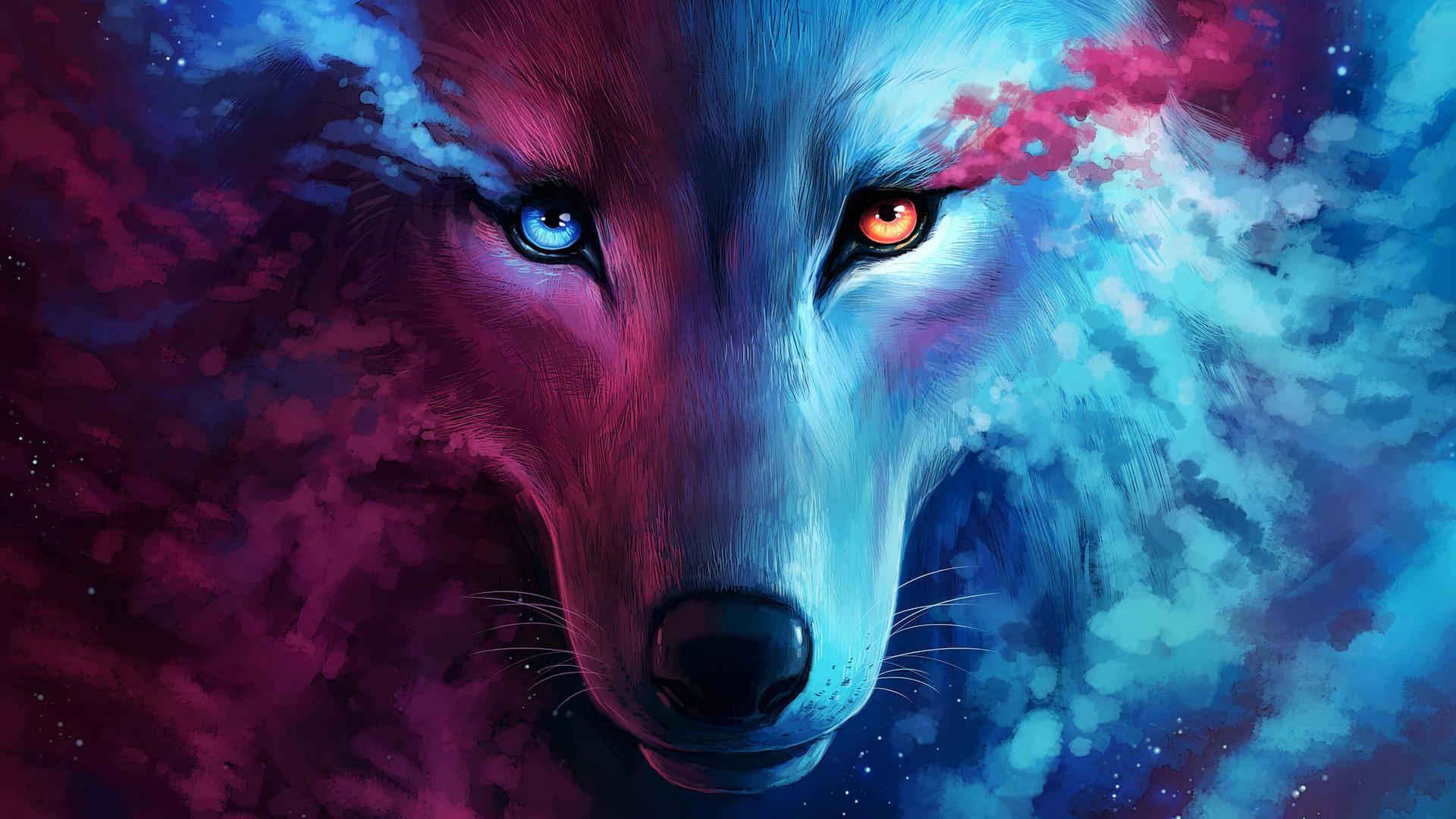 Galaxy Cool Blue Flame Galaxy Blue Wolf Wallpaper Novocom Top