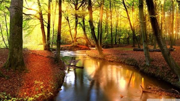 autumn landscape wallpaper 69