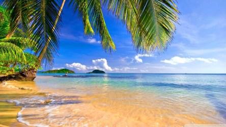 beach resolution widescreen standard