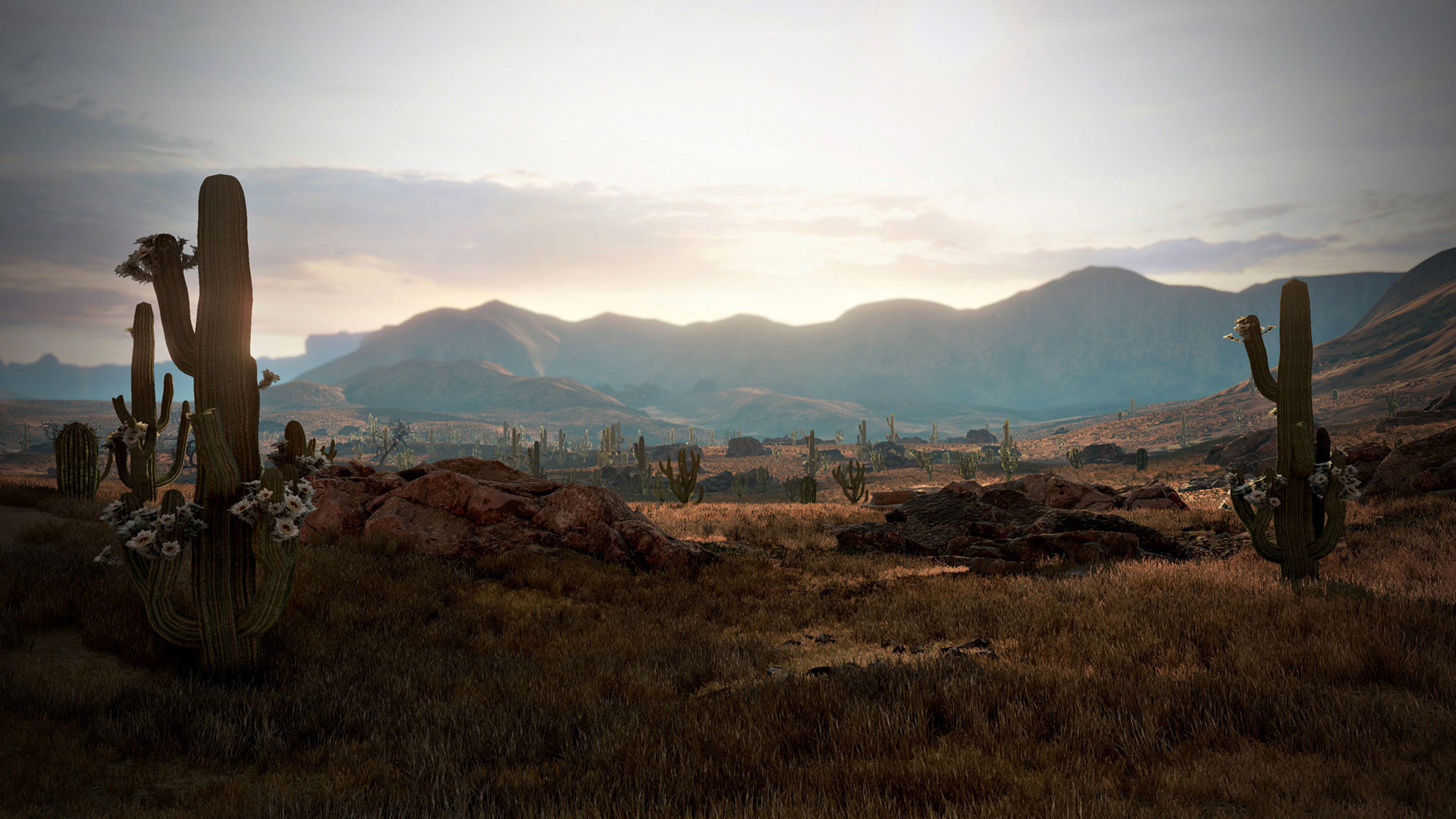 Wild West Wallpapers 64 Images