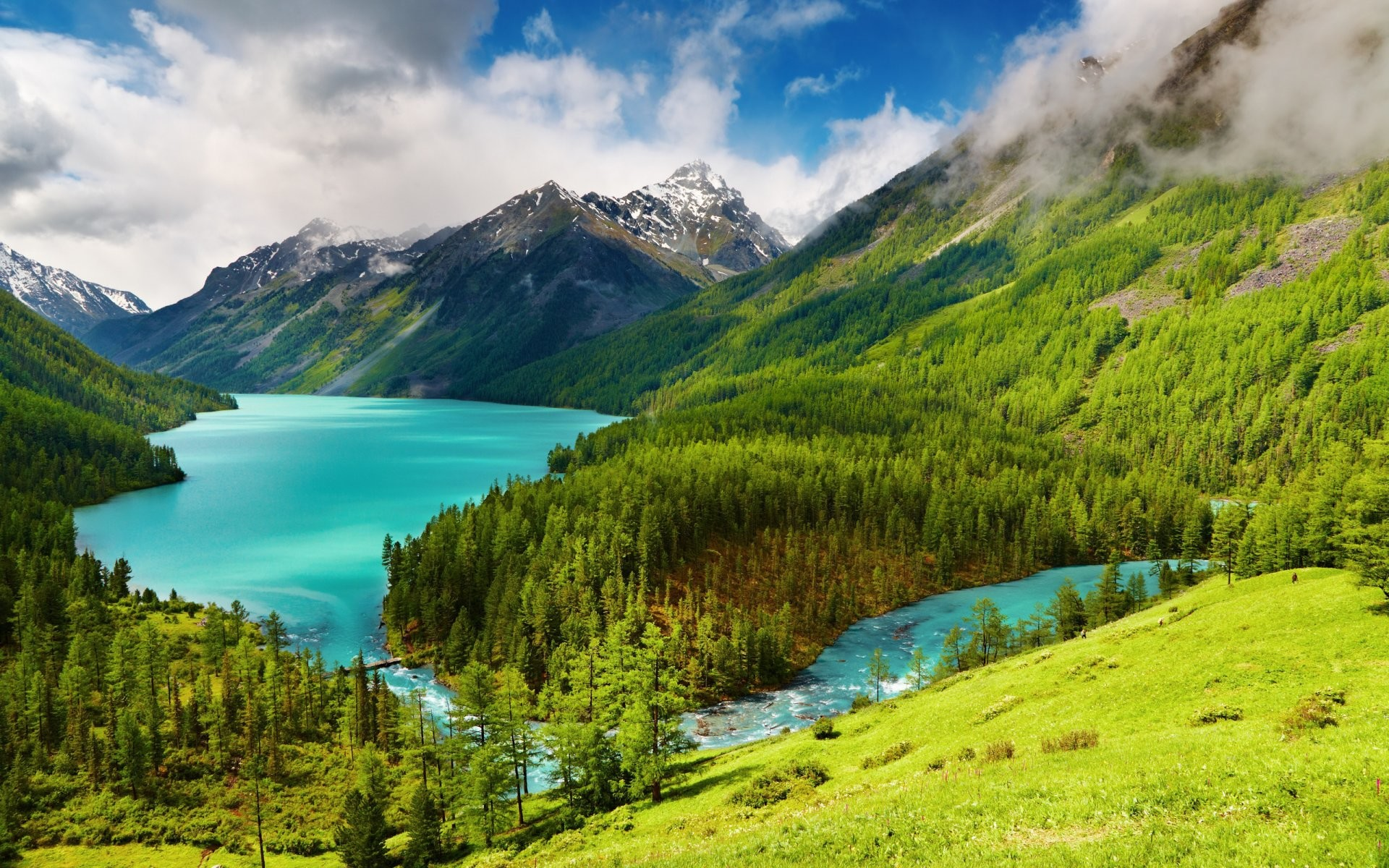 nature wallpapers and screensavers
