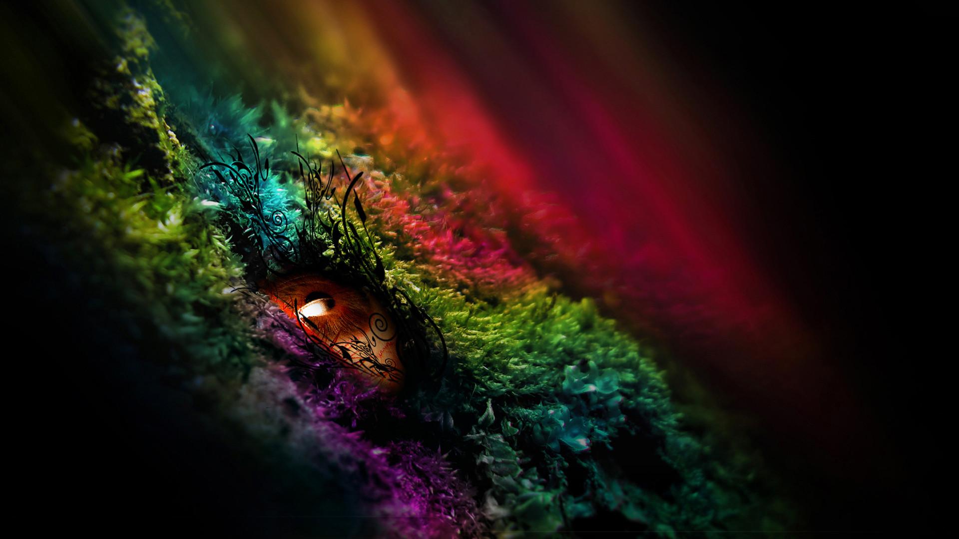 Color HD Wallpaper 75 images