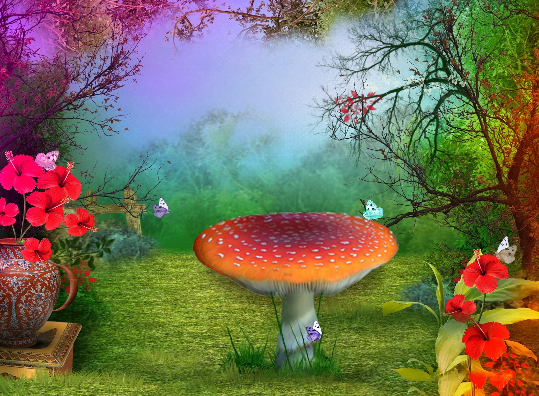 3d Mushroom Garden Wallpaper 3d Mushroom Wallpaper 55 Images