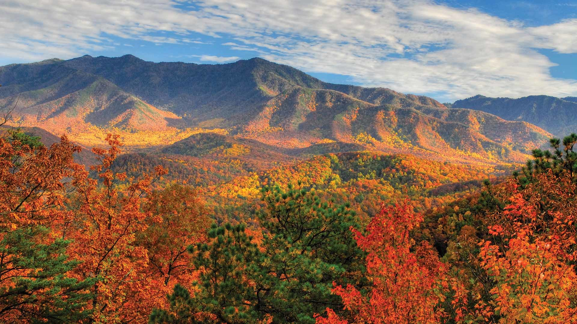 Great Smoky Mountains Fall Iphone Wallpaper Blue Ridge Mountain Wallpaper 53 Images