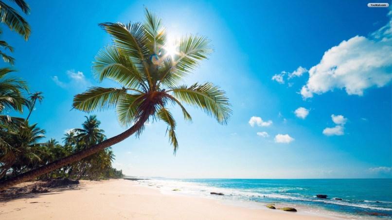 Tropical Pictures For Desktop Labzada Wallpaper