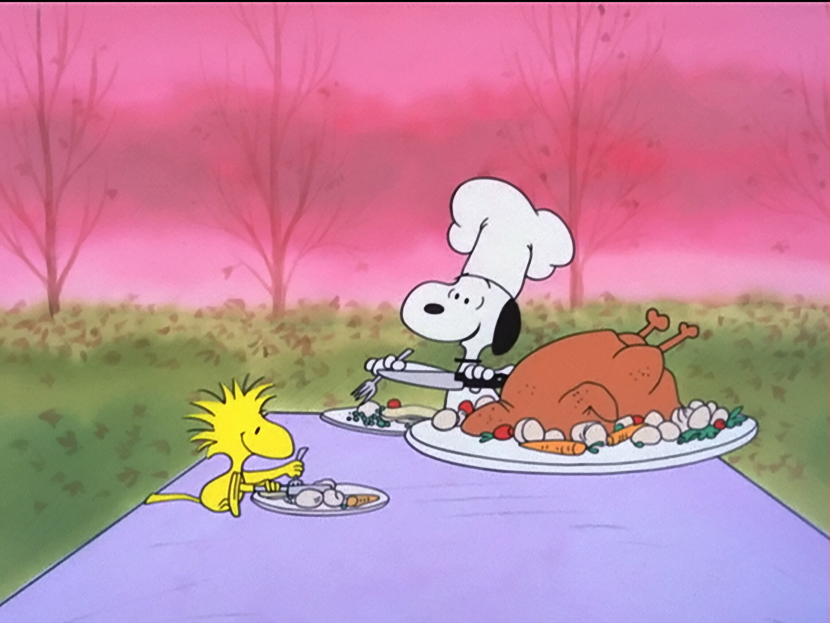 Peanuts Wallpaper Fall Snoopy And Woodstock Thanksgiving Wallpaper 56 Images