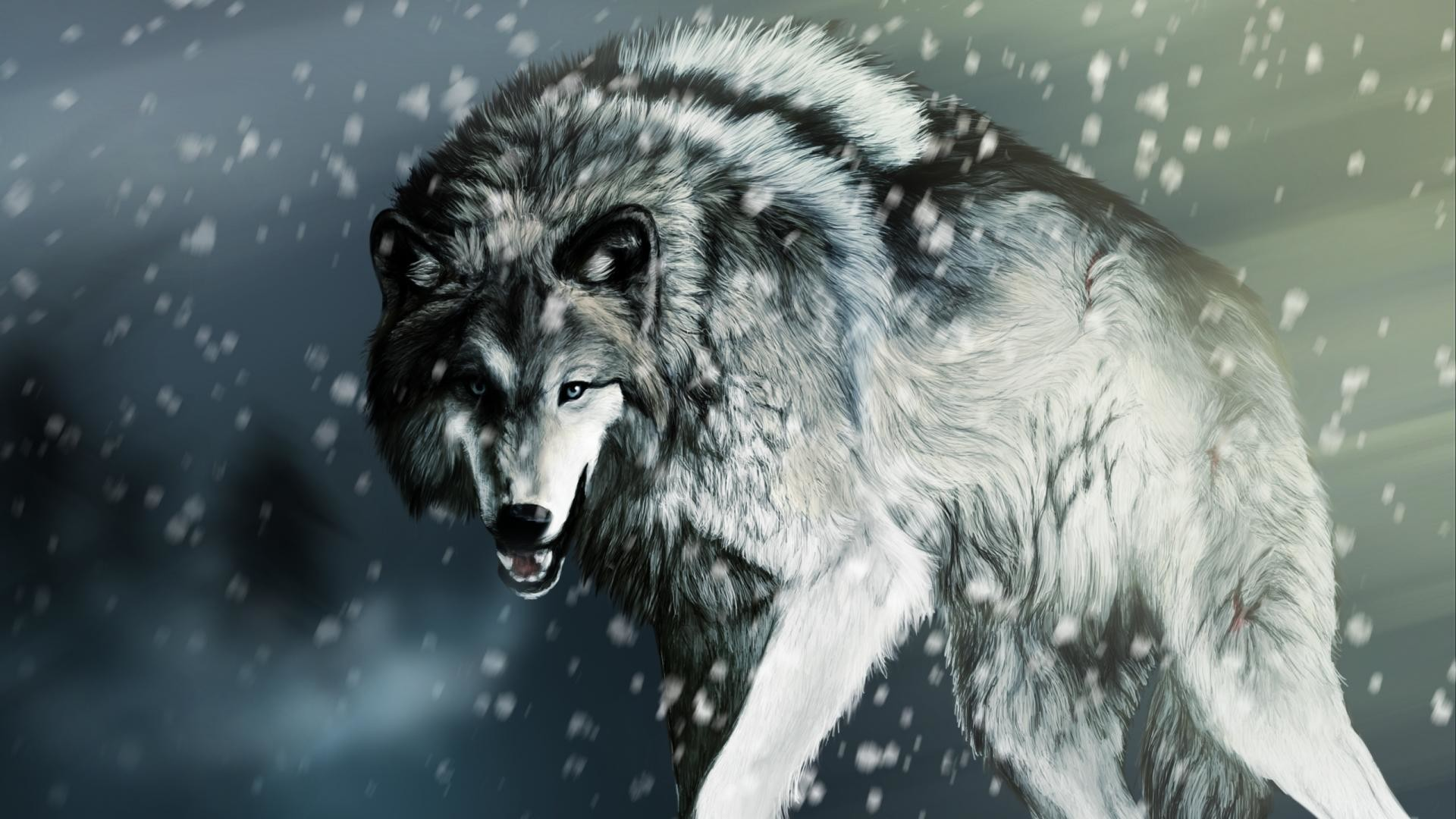 1920x1080 Wallpapers For Cool Wolf Wallpaper Hd