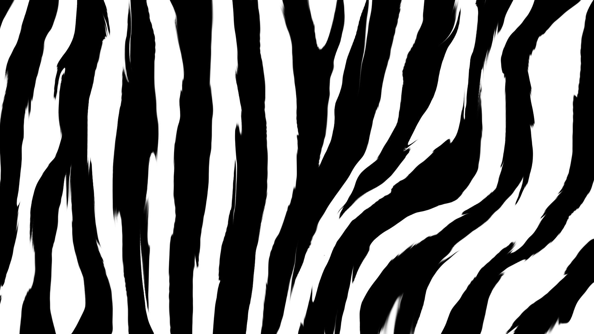 Neon Animal Print Wallpaper Zebra Desktop Backgrounds 71 Images