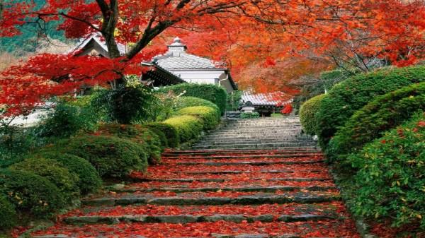 japanese landscape wallpaper 62